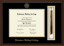 Lebanon Valley College Diploma Frame - Tassel Edition Diploma Frame in Delta