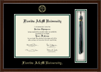 Florida A&M University Diploma Frame - Tassel Edition Diploma Frame in Delta