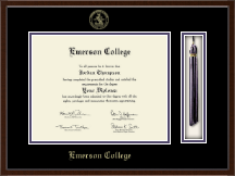 Emerson College Diploma Frame - Tassel Edition Diploma Frame in Delta