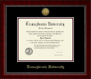 Transylvania University Diploma Frame - Gold Engraved Medallion Diploma Frame in Sutton