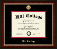 Hill College Diploma Frame - Gold Engraved Medallion Diploma Frame in Murano