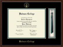 Babson College Diploma Frame - Tassel Edition Diploma Frame in Delta