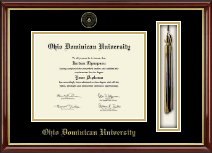 Ohio Dominican University Diploma Frame - Tassel Edition Diploma Frame in Southport Gold