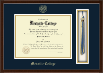 Medaille College Diploma Frame - Tassel Edition Diploma Frame in Delta