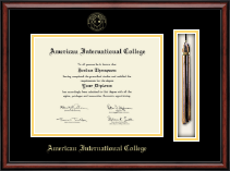 American International College Tassel Edition Diploma Frame in Southport