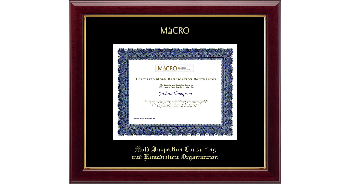 Mold Inspection Consulting And Remediation Organization Gold
