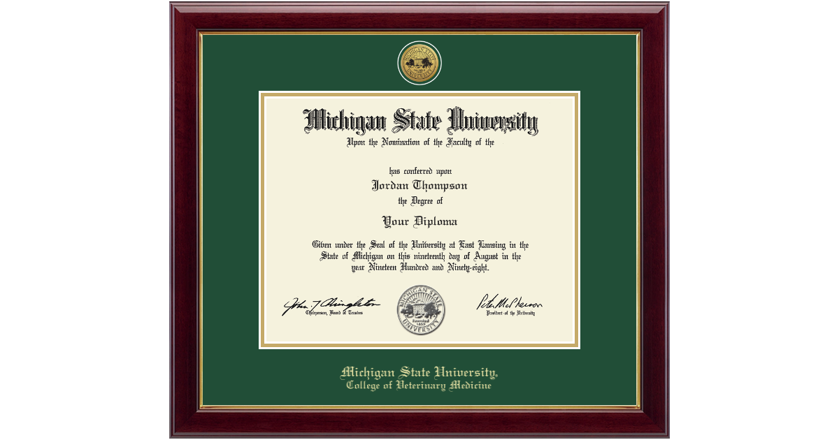 Michigan State University Gold Engraved Medallion Diploma Frame in ...