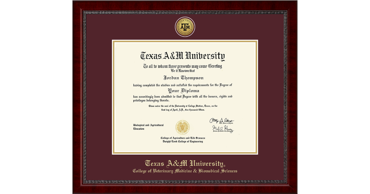 Texas A&M University Gold Engraved Medallion Diploma Frame in Sutton ...