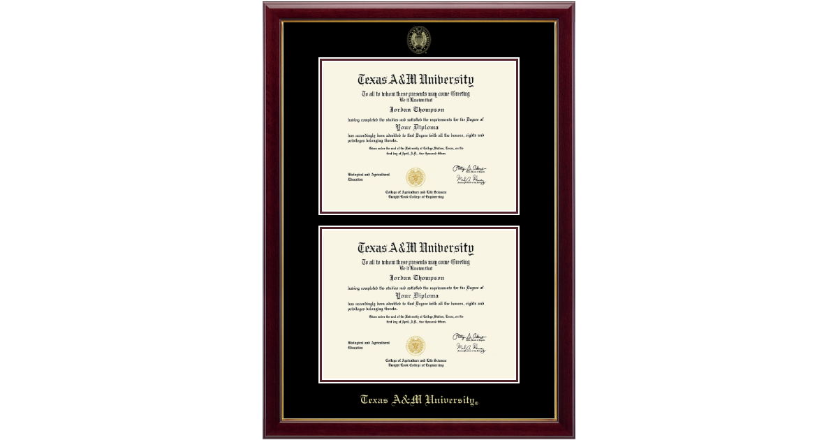 Texas A&M University Double Diploma Frame in Gallery - Item #289371 ...